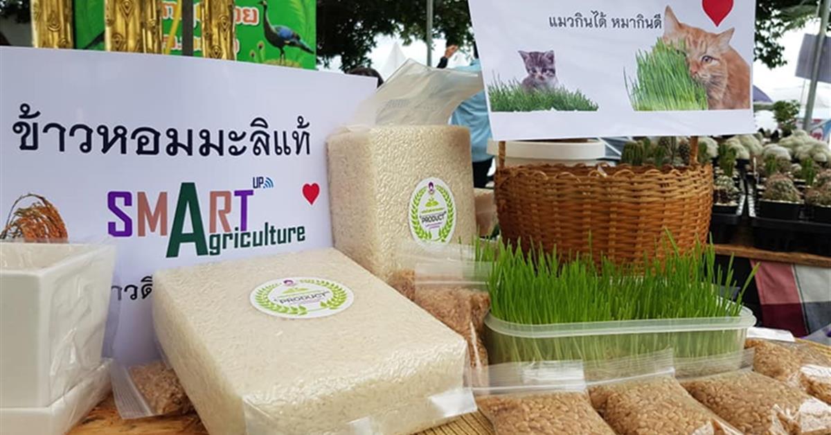 """คณะเกษตรศาสตร์ฯ ร่วมจัดกิจกรรมออกบูธในงาน """" ล้าลาลอย """" จำหน่ายและแสดงโชว์ผลิตภัณฑ์ของคณะ และของนิสิตคณะเกษตรศาสตร์ฯ"""