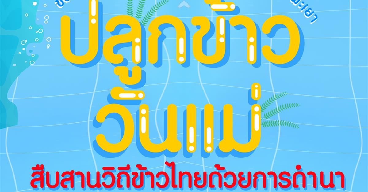 """ขอเชิญชวนนิสิตและบุคลากรมหาวิทยาลัยพะเยา ร่วมกิจกรรม """" ปลูกข้าววันแม่ สืบสานวิถีข้าวไทยด้วยการดำนา """""""