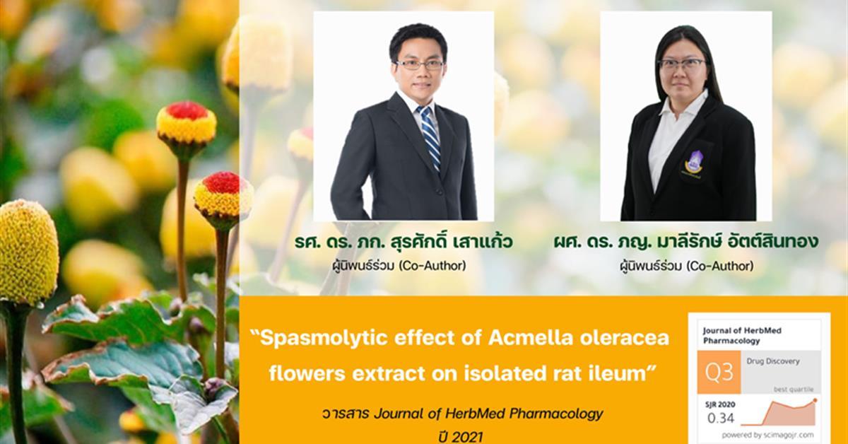 """รองศาสตราจารย์ ดร. เภสัชกร สุรศักดิ์ เสาแก้ว ผู้ช่วยศาสตราจารย์ ดร. เภสัชกรหญิง มาลีรักษ์ อัตต์สินทอง ได้รับการตีพิมพ์ผลงานวิจัยในระดับนานาชาติ ผลงานวิจัยเรื่อง """"Spasmolytic effect of Acmella oleracea flowers extract on isolated rat ileum"""" ในวารสาร Journal of HerbMed Pharmacology"""