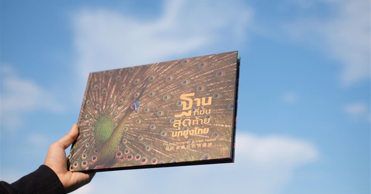 """""""รู้จักนกยูงพะเยา"""" ก่อนเทศกาลนับนกยูงผ่านหนังสือฐานที่มั่นสุดท้ายนกยูงไทย"""