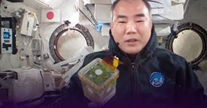 สาธิตฯ ม.พะเยา เสร็จสิ้นภารกิจทดลองปลูกโหระพาอวกาศ เตรียมสรุปผลการทดลองส่งรายงาน AHiS   </a><div style=
