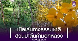 เตรียมเปิดเส้นทางธรรมชาติสวนป่าต้นคำมอกหลวง ภูมิทัศน์แห่งใหม่ใน ม.พะเยา