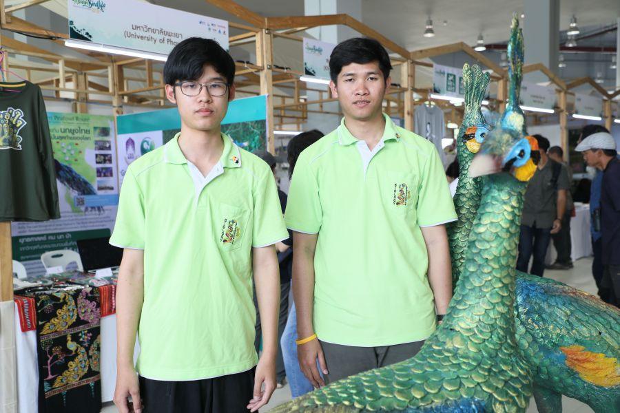 thai green peafowl