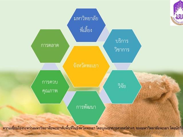นักวิจัยคณะวิทยาการจัดการและสารสนเทศศาสตร์_ข้าวหอมมะลิ