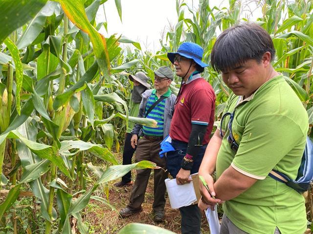 """คณะเกษตรศาสตร์และทรัพยากรธรรมชาติ ม.พะเยา เข้าร่วมการประชุมและลงพื้นที่ติดตามความก้าวหน้าโครงการวิจัยกลุ่มเรื่องพืชสวน/พืชไร่ (ไม้ผล ไม้ดอกไม้ประดับ พืชผัก และข้าวโพด) เรื่อง """"การพัฒนาพันธุ์ข้าวโพดเลี้ยงสัตว์ลูกผสมเชิงการค้าโดยการบูรณาการของภาครัฐ"""""""