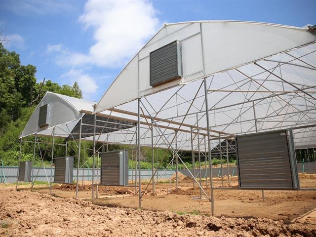 ความคืบหน้าก่อสร้างโรงเรือนเพาะปลูกกัญาชาและกัญชง มหาวิทยาลัยพะเยา